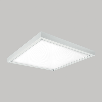 P 250 LED Diffused Light